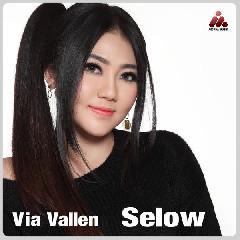 Download Via Vallen - Selow.mp3   Laguku